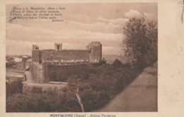 CARTOLINA VIAGGIATA 1929 MONTALCINO SIENA (TY561 - Siena
