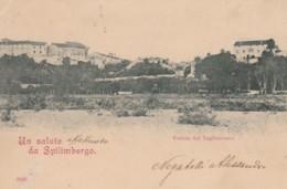 CARTOLINA VIAGGIATA SPILIMBERGO (PN) (TY591 - Pordenone