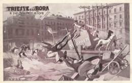 CARTOLINA VIAGGIATA 1930 TRIESTE E LA BORA (TY870 - Trieste