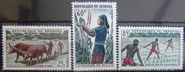 SENEGAL                         N° 255/257                          NEUF** - Senegal (1960-...)
