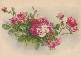AK Rote Rosen - Ca. 1945 (47725) - Fleurs