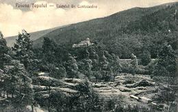 POIANA TAPULUI / PRAHOVA : CASTELUL GR. CANTACUZINO & TRAVAIL DU BOIS / TIMBER WORKING - ANNÉE / YEAR : 1925 (ae116) - Roemenië