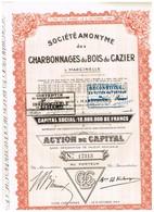 Titre Ancien - Sté Anonyme Des Charbonnages Du Bois Du Cazier - Marcinelle - Titre De 1947 - Mines
