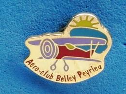AERO CLUB BELLEY PEYRIEU  (Vendu Port Et Frais Compris) - Airplanes