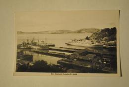 Nouvelle Zelande Dunedin Port Chalmers Bateaux - Nouvelle-Zélande