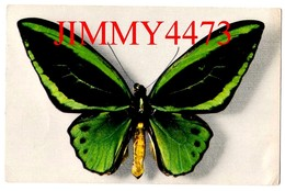 CPA - PAPILLON - ORNITHOPTERA ARUANA ( Aru Islande ) Coll. Boubée - N°2 - Edit. COMITE NATIONAL DE L' ENFANCE - Butterflies