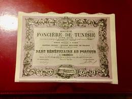 Sté FONCIÈRE  De  TUNISIE  --------Part  Bénéficiaire - Afrique