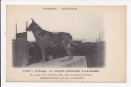 CP 92 COURBEVOIE Chenil Special De Chiens Bergers Allemands Madame Fournier 161 Rue Armand Silvestre - Courbevoie