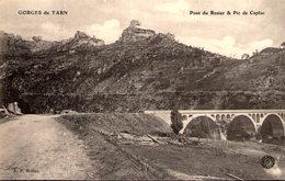 48 - Gorges Du Tarn - Pont Du Rozier Pic De Capluc - Gorges Du Tarn