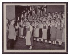 Adolf Hitler (007063) Sammelbilder Austria Tabakwerke, AH Und Sein Weg Zu Großdeutschland Bild 213, Die Schönste Stunde - Cigarette Cards