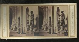 Carte Stereo   Napoli Musee De Napoli Adriano - Napoli