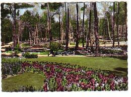 Le Clapet Les Mathes - Parc Résidentiel De La Palmyre - Culture De Tulipes - Circulé 1971 - Les Mathes