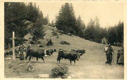 Montana Sans Légende - VS Valais