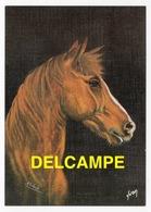 DF / ANIMAUX / CHEVAUX / TÊTE DE CHEVAL PAR SCHRUB - Pferde