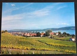 Praz/Vully - FR Fribourg