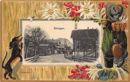 LITHOGRAPHIE SUISSE BÖNIGEN ( Edelweiss-Chiens Bassets- Fleurs - Vêtements Et Chaussures De Montagne) TBE - BE Bern