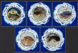 Oman (2019) - Set -  /  Tortues - Tortugas - Turtles - Tortues