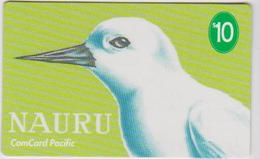 NAURU - WHITE TERN - BIRD - Nauru