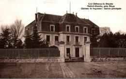 33 SAINT-GENES PRES BLAYE CHATEAU DE SEGONZAC ENTREE PRINCIPALE - Francia