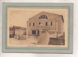 CPA - (34) FELINES-HAUT - Mots Clés : Cave, Coopérative Du Minervois, Vigne, Vin, Viticulteur, Viticulture - 1930 - France