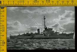 Marina Navigazione Nave - Paquebots