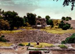 Monte Porzio Catone ( Roma ) - Il Tuscolo - Anfiteatro Romano - Viaggiata - Non Classificati