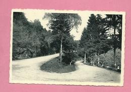 C.P. Petit-Fays  = Route  En  Lacets - Bièvre
