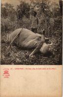 CPA INDOCHINA Lang-Bian Un Beau Coup De Fusit VIETNAM (958035) - Viêt-Nam