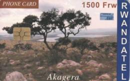 PHONE CARD RWANDA (E59.16.8 - Rwanda