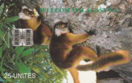 PHONE CARD MADAGASCAR (E59.20.3 - Madagascar