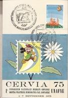 Italia - Cartolina Con Annullo Speciale: 1° Manif. Filat. Numism.Nazionale Giovanile - Cervia (RA) - 1975 - 1946-.. République