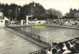29 Brest, Piscine Du Tréornou, Spectacle De Natation Synchronisée, Visuel Pas Courant - Brest