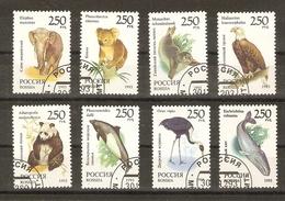 Russie 1993 - Faune Du Monde - Série Complète° - 6040/7- Panda - Koala - Baleine - Marsouin - Eléphant - Phoque - Aigle - Vrac (max 999 Timbres)