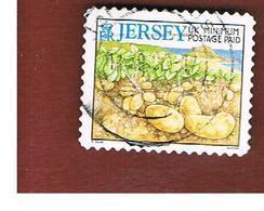 JERSEY  -  2005    POTATOES   -   USED - Jersey
