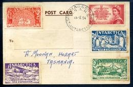 Australian Antarctic Territory - Issues - 1952-65 Elizabeth II : Ed. Pré-décimales