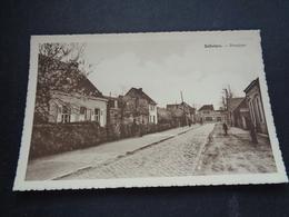 Belgique  België  ( 2695 )   Saffelaere   Zaffelare - Autres