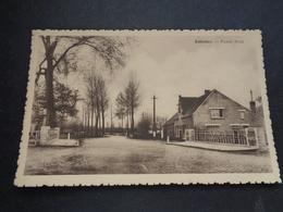 Belgique  België  ( 2696 )   Saffelaere   Zaffelare - Autres