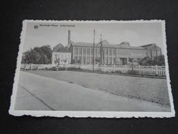 Belgique  België  ( 2699 )   Moerbeke - Waas    Suikerfabriek   Fabrique à Sucre - Mörbeke-Waas