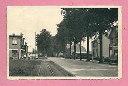 C.P. Poppel  =  Steenweg  Op  TILBURG - Ravels