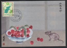 Taiwan R.O.CHINA - Maximum Card.- New Year's Greeting Postage Stamps - 1945-... Repubblica Di Cina