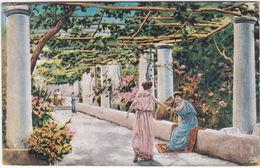CAPRI - NAPOLI - UN PERGOLATO -32347- - Napoli (Naples)