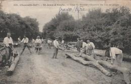 Très Rare Cpa St Jean D'Angle Usine G.Drouet Scierie Chantiers Des Bois En Grume - France