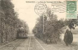 Belgique - Tervueren - La Voie Des Tramways Vers Le Parc - Tram N° 40 - Tervuren