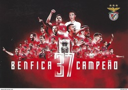 PORTUGAL - Official Postcard With CTT Association - BENFICA Champion 37th - Football