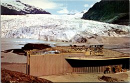 Alaska Juneau Mendenhall Glacier - Juneau