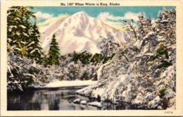 Alaska Winter Scene - Sitka