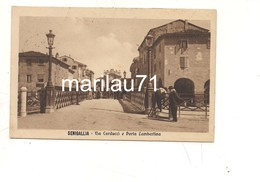 P805 Marche SENIGALLIA Ancona 1915 Viaggiata - Senigallia