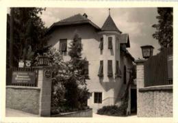 Termeno - Pension Traminer Weinklause - Bolzano (Bozen)