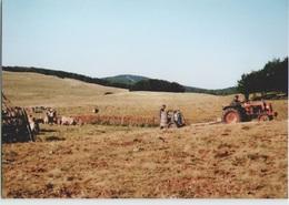CPM 12 SAINT CHELY D'AUBRAC ... Calmejane, Retour Au Buron Après La Traite (Livenais JE200789) Vaches, Tracteur - Francia