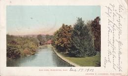 USA 1903 CARTE POSTALE DE WORCESTER  ELM PARK - Worcester